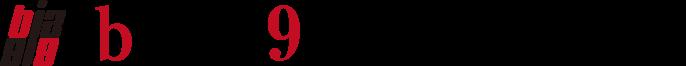 biz919.com(ビズクイックドットコム)